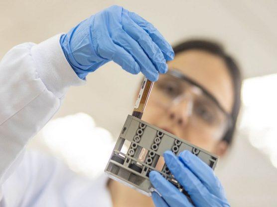 Paraíba Online • Universidade inaugura laboratório que identifica doenças emergentes
