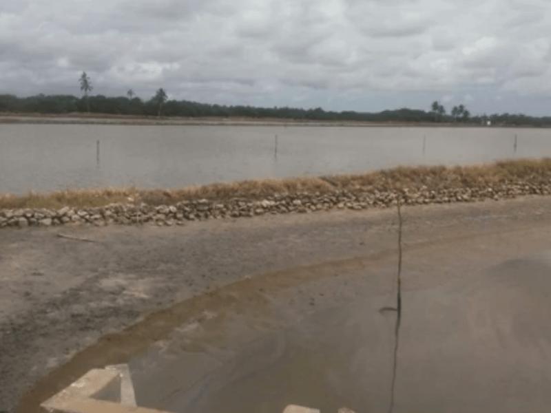 Paraíba Online • Após acidente, pescador morre afogado em viveiro de camarões